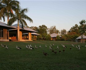 Feathers Sanctuary - Accommodation Perth