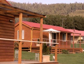 Maydena Country Cabins Accommodation  Alpaca Stud - Accommodation Perth