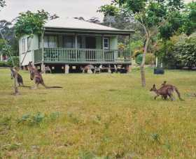 Berringer Lake Holiday Cottages - Accommodation Perth
