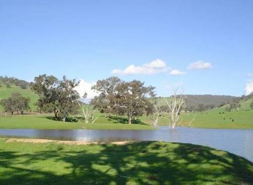 Hillview Farmstay - Accommodation Perth