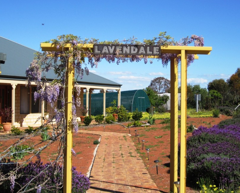 Lavendale Farmstay and Cottages - Accommodation Perth