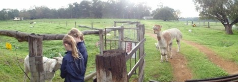 Boronia Farm Farmstay - Accommodation Perth