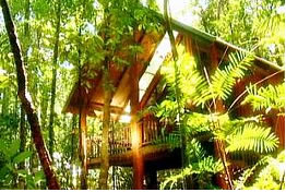 The Canopy Treehouses - Accommodation Perth