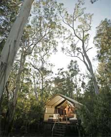 Paperbark Camp - Accommodation Perth