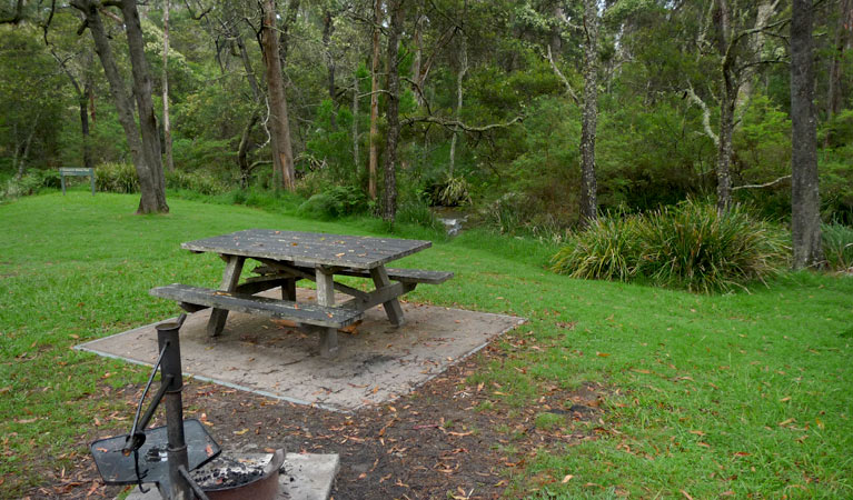 Chaelundi campground - Accommodation Perth