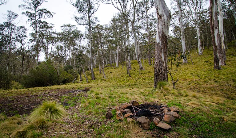 Gummi Falls campground - Accommodation Perth