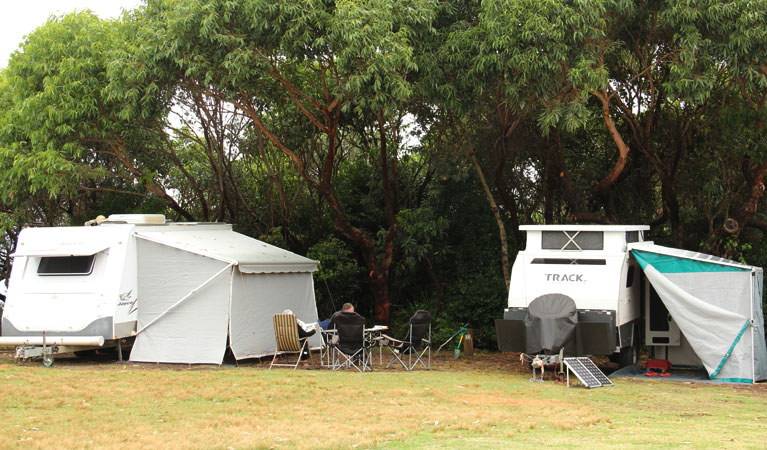 Pretty Beach campground - Murramarang National Park - Accommodation Perth