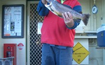 Rainbow Pines Tourist Caravan Park - Accommodation Perth
