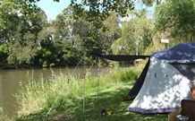 Williams River Holiday Park - Accommodation Perth