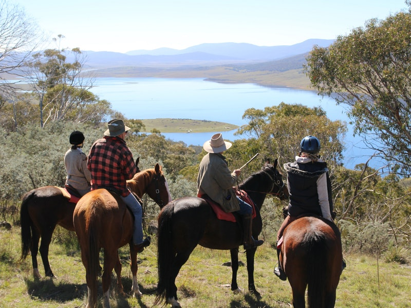 Reynella Homestead and Horseback Rides - Accommodation Perth