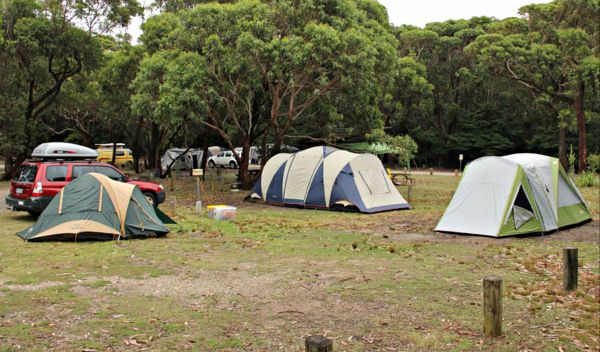 Pretty Beach Campground Murramarang National Park - Accommodation Perth