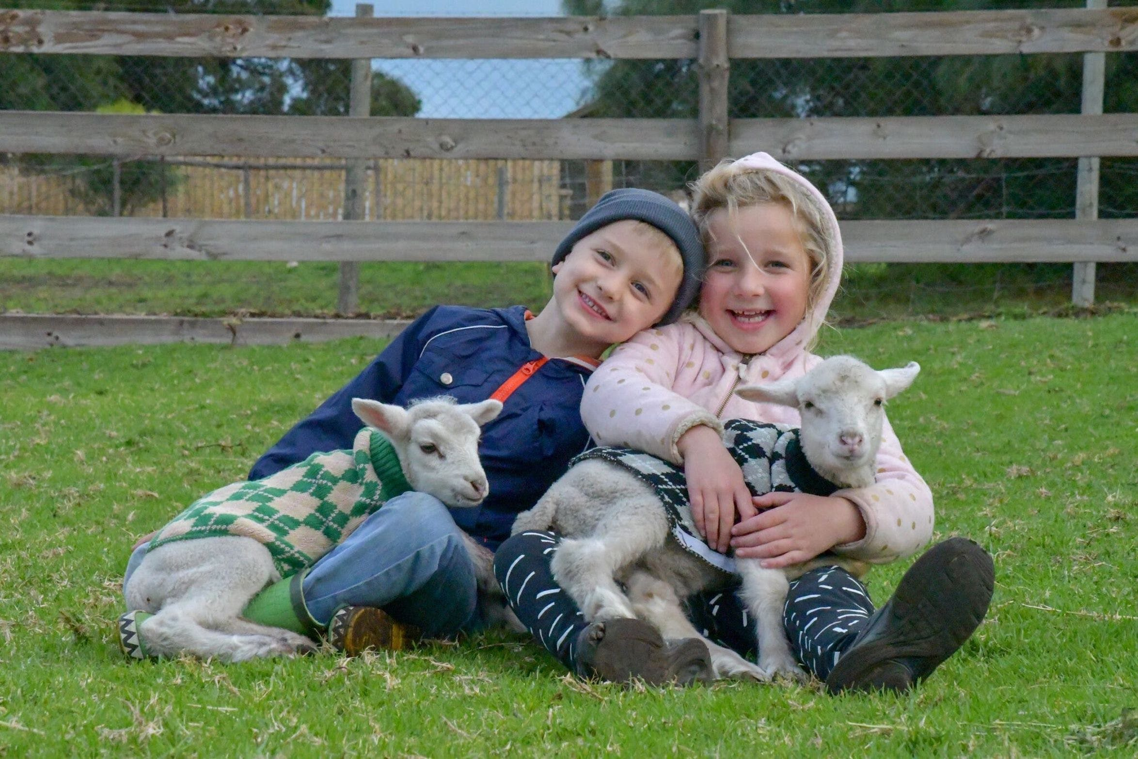Narnu  Farm Farm stay/ School Camp - Accommodation Perth