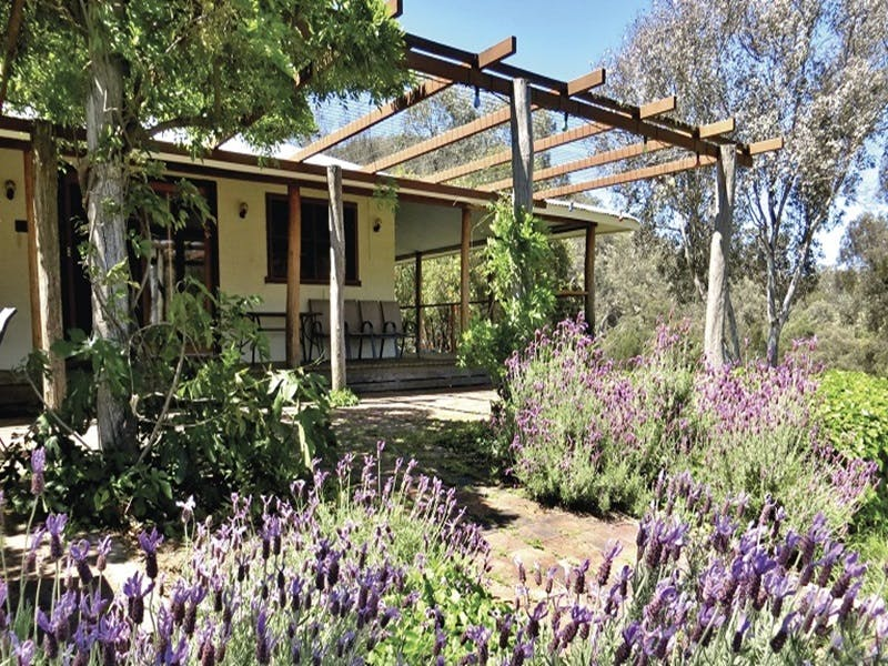 Capertee Homestead - 'Port Macquarie' - Accommodation Perth
