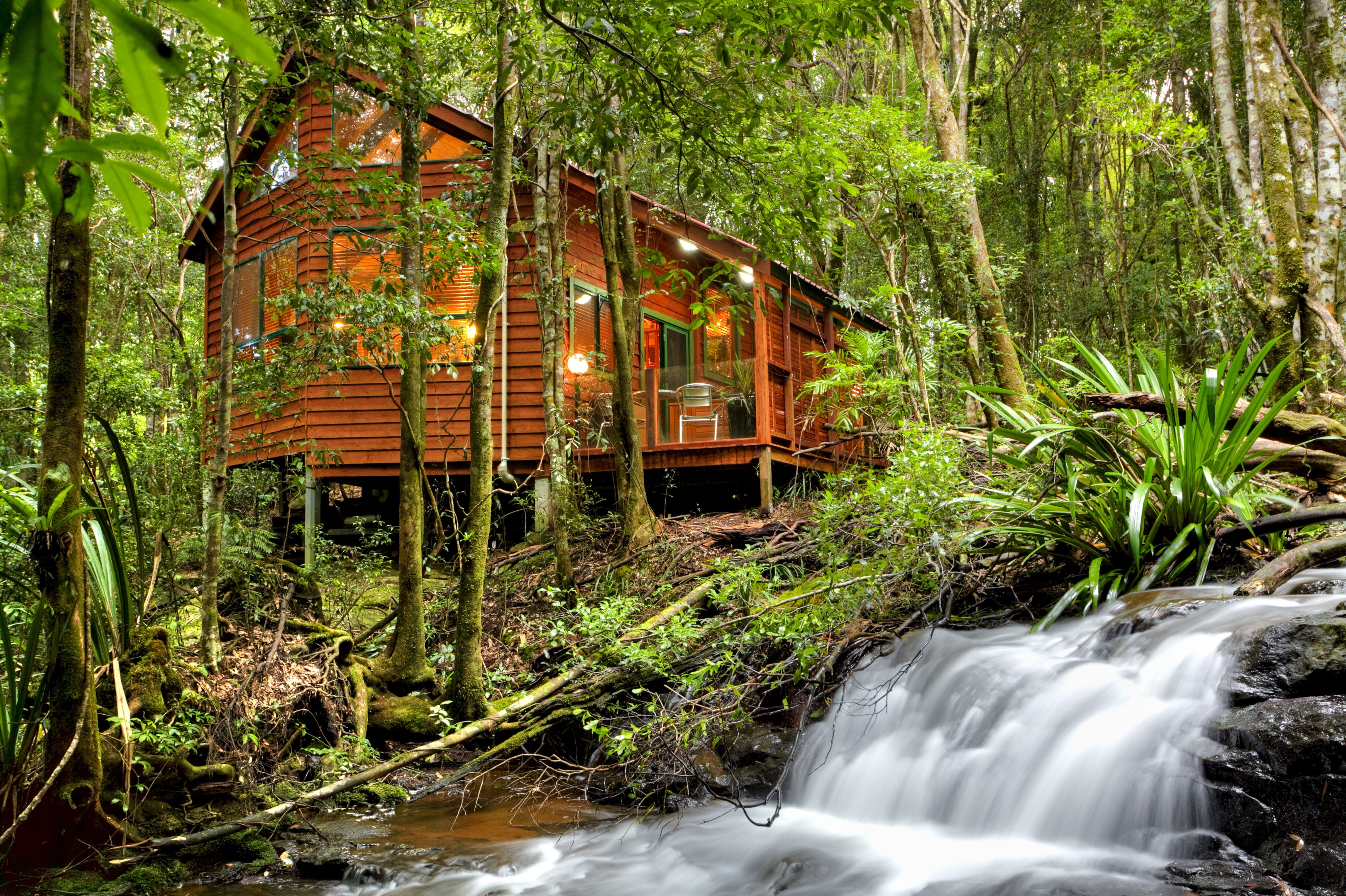 The Mouses House - Rainforest Retreat - Accommodation Perth