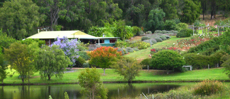 Pemberton Lavender and Berry Farm Cafe and Cottages - Accommodation Perth