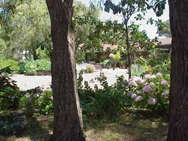 Peaceful Bay Bed and Breakfast - Accommodation Perth