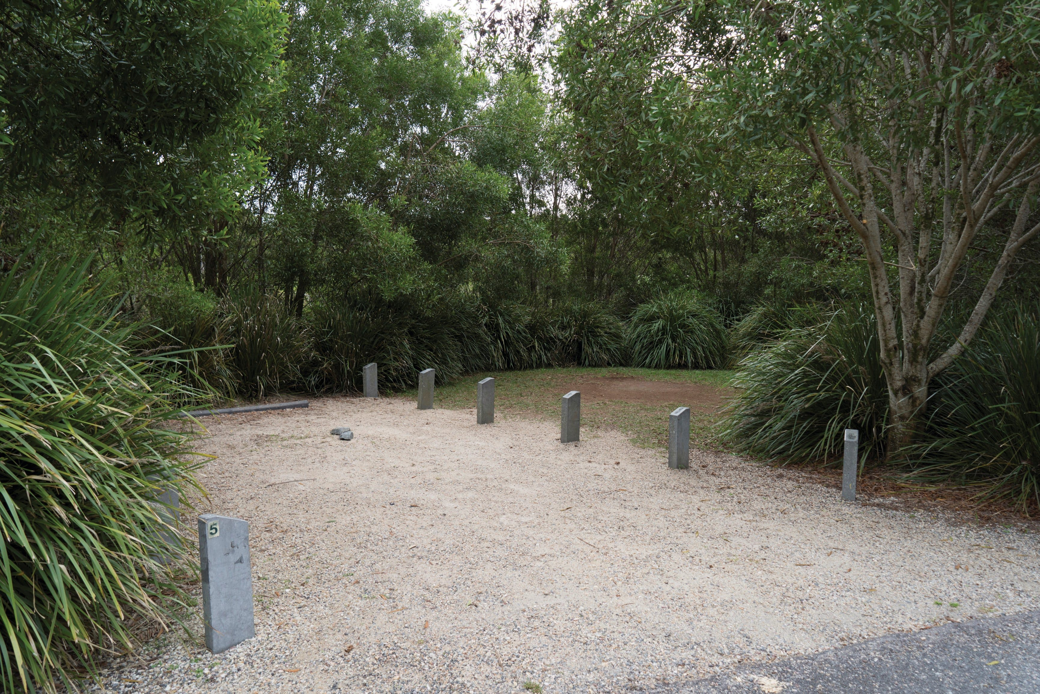 Springbrook National Park camping - Accommodation Perth