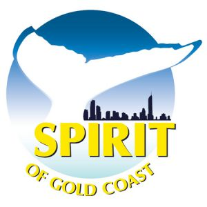 Spirit of Gold Coast Whale Watching - Accommodation Perth