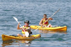 Manly Kayaks - Accommodation Perth