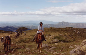 High Country Horses - Accommodation Perth