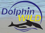 Dolphin Wild - Accommodation Perth