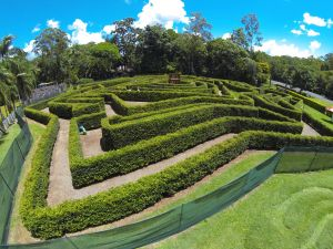 Bellingham Maze - Accommodation Perth