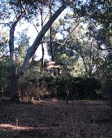 Ghost House Walk Trail Yanchep National Park - Accommodation Perth