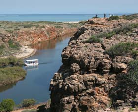 Yardie Creek Cape Range National Park - Accommodation Perth