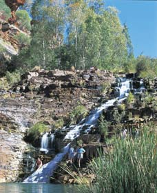 Fortescue Falls - Accommodation Perth