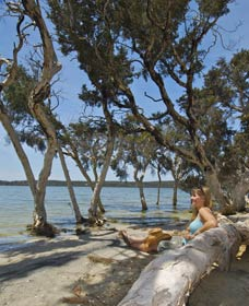 Stokes National Park - Accommodation Perth