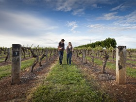 Coonawarra Wineries Walking Trail - Accommodation Perth