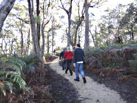 Bridport Walking Track - Accommodation Perth