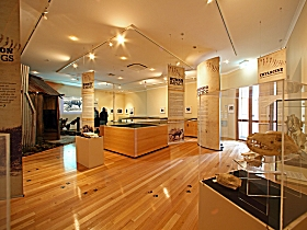 Tasmanian Tiger Exhibition - Accommodation Perth