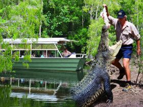 Hartleys Crocodile Adventures - Accommodation Perth