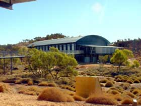 Dinosaur Stampede at Lark Quarry Conservation Park - Accommodation Perth