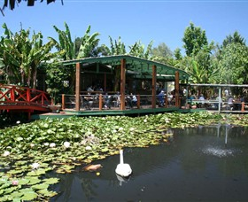 Blue Lotus Water Garden - Accommodation Perth