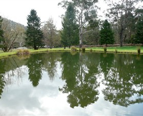 Mountain Fresh Trout and Salmon Farm - Accommodation Perth