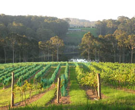 Tilba Valley Wines - Accommodation Perth