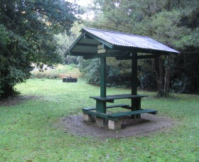 Pine Creek State Forest - Accommodation Perth
