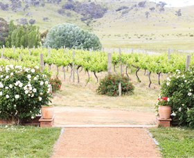 Brindabella Hills Winery - Accommodation Perth