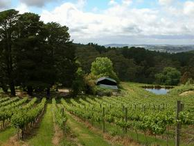Arranmore Wines - Accommodation Perth