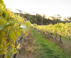 Harcourt Valley Vineyards - Accommodation Perth