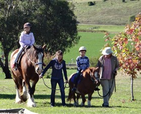 Bathurst Farm Experience - Accommodation Perth