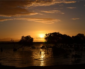 Southend Curtis Island