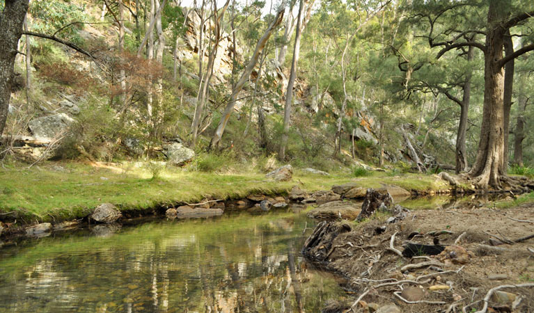 Capertee National Park - Accommodation Perth