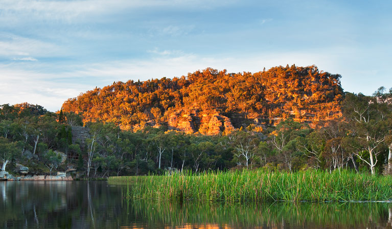 Wollemi National Park - Accommodation Perth