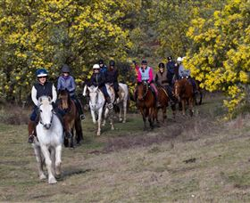 Burnelee Excursions on Horseback - Accommodation Perth
