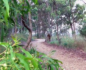 Mount Mutton Walking Trail - Accommodation Perth