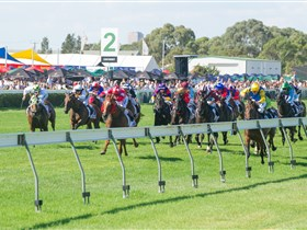 Morphettville Racecourse - Accommodation Perth
