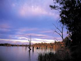 Loch Luna Game Reserve and Moorook Game Reserve - Accommodation Perth